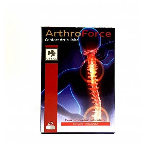 PHYTOTHERA ARTHROFORCE - 60 Gélules